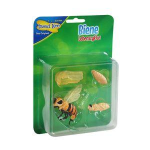 Insect Lore - Lebenszyklus Biene aus Kunststoff