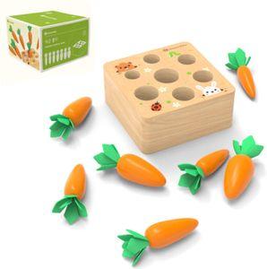 Holzspielzeug Montessori,Karotte Spielzeug,sortierspiel Holz für Kinder,motorik Spielzeug Kleinkind,karottenernte Montessori,pädagogisches Spielzeug Holz