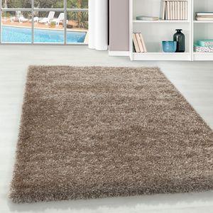 Teppium Hochflor Teppich, Wohnzimmerteppich, Weicher Oberflächeem Glanz Garn, Farbe:TAUPE,80 cm x 150 cm