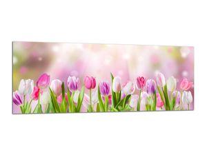 Glasbilder Wandbilder 125x50cm Tulpen Stillleben AG312502488