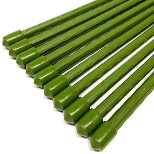 10er Set Pflanzstäbe Rankhilfe 120cm | Pflanzenstäbe Pflanzen Stab Stäbe | Pflanzenstütze Pflanzhilfe Rankstäbe
