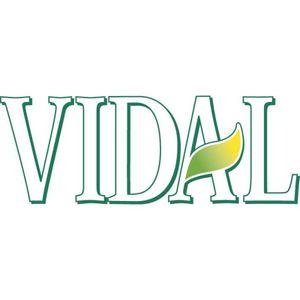 VIDAL Badeschaum Velvet Seansation Pfirsich & Akazienmilch 750ml