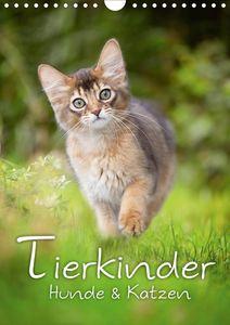 Calvendo Wandkalender Tierkinder Hunde und Katzen (Wandkalender 2021 DIN A4 hoch) 2021 DIN A4