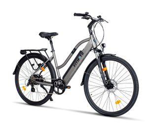 Fitifito CT28 Zoll Elektrofahrrad Citybike E-Bike Pedelec, 48V 250W Heckmotor, 13Ah 624Wh Lithium-Ionen USB 7 Gang Shimano Schaltung (grau)