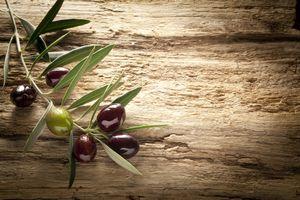 4x Tischsets Motiv 'Oliven' / abwaschbar