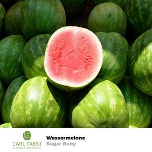 """Wassermelone """"Sugar Baby"""" Pflanzensamen Melonen Samen Melone Süß für 10 Pflanzen Garten Obstsamen Obst Saat Saatgut Sämereien"""