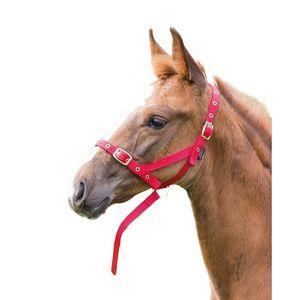 Shires Fohlenhalfter Slip ER671 (Foal/Mini) (Rot)