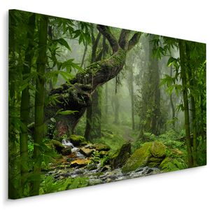 Fabelhafte Canvas LEINWAND BILDER 70x50 cm XXL Kunstdruck Natur Wald Dschungel Bach