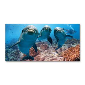 Tulup® Leinwandbild - 120x60 cm - Wandkunst - Drucke auf Leinwand - Leinwanddruck - Tiere - Blau - Delfine
