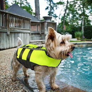 Hundeschwimmweste Rettungswesten Schwimmweste für Kleine Hunde