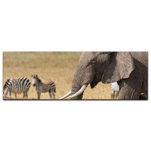 Leinwandbild - Afrika ( Zebra und Elefant), Größe:90 x 30 cm