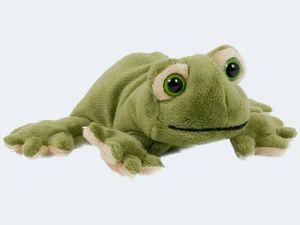 Plüschtiere Frosch 15cm, Teil Beanie Frösche Stofftiere Kuscheltier Softplüsch