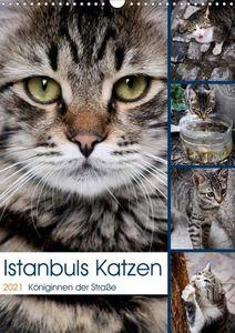 Calvendo Wandkalender Istanbuls Katzen (Wandkalender 2021 DIN A3 hoch) 2021 DIN A3