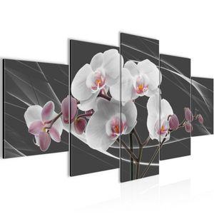 Blumen Orchidee BILD :200x100 cm − FOTOGRAFIE AUF VLIES LEINWANDBILD XXL DEKORATION WANDBILDER MODERN KUNSTDRUCK MEHRTEILIG 202951c