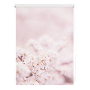 Rollo Klemmfix, ohne Bohren, blickdicht, Kirschblüten - Rosa 80 cm x 150 cm (B x