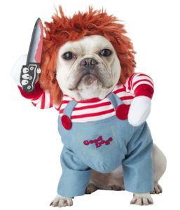 1 Stück Haustierkleidung, verwandelt in lustige Hundekleidung (S)