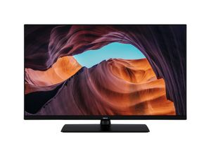 NOKIA FullHD LED TV 80cm (32 Zoll) 3200A Triple Tuner, Android Smart TV, HDR 10