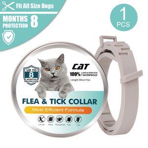 Flohhalsband für Katzen 8-monatige Floh- und Zeckenprävention für Katzen ab einem Alter von 3 Monaten