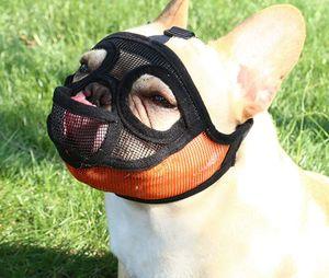Maulkorb für Hunde mit abgeflachter Schnauze-verstellbar, atmungsaktiv: Englische Bulldogge, Französische Bulldogge, Pekingese, Shih-Tzu, Mops, auch für Katzen geeignet, Orange-A m