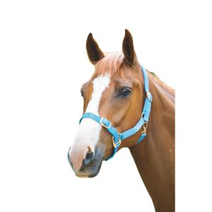 Shires Pferdehalfter Verstellbar ER718 (Pony) (Hellblau)