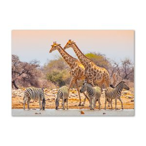 Tulup® Leinwandbild - 100x70 cm - Wandkunst - Drucke auf Leinwand - Leinwanddruck  - Tiere - Braun - Giraffen und Zebras