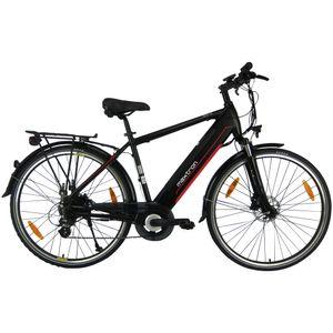 Maxtron Trekking Bike mit integrierten Akku  Modell Herren