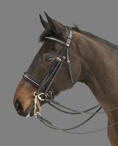 MOUNTAIN HORSE Rubicon multi bridle, schwarz, Vollblut