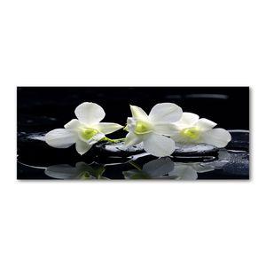 Tulup® Glas-Bild Wandbild aus Glas - 125x50 - Wandkunst - Wandbild hinter gehärtetem Sicherheitsglas - Dekorative Wand für Küche & Wohnzimmer  - Blumen & Pflanzen - Orchidee - Weiß