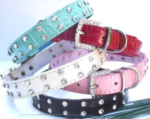 Hundehalsband STRASS-Reihe Hunde Halsband   Straßhalsband Strass  in 5 Farben