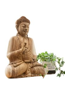 Mali Buddha Groß Suar Natur