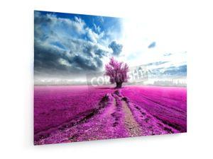 Surreale Landschaft - 100x75cm - Leinwandbild auf Keilrahmen - weewado - Wandbilder - Kunst, Gemälde, Fotografie - Landschaft