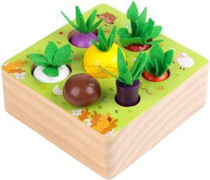 Holzspielzeug ab 1 Jahr | Baby Motorik Spielzeug für 12 Monate Jungen und Mädchen | Montessori Sortierspiel Holzpuzzle Bauernhof| Lernspielzeug für Kinder als Geburtztag Geschenk
