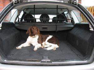 Hundegitter Lastengitter Trenngitter Gepäckgitter Gitter Limousine Kombi