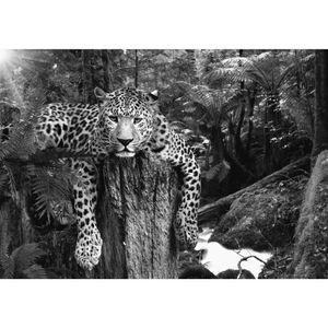 Leopard 9201c RUNA Leopard VLIES FOTOTAPETE XXL DEKORATION TAPETE− WANDDEKO 396 x 280 cm
