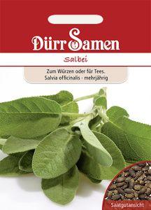 Dürr Samen - Salbei