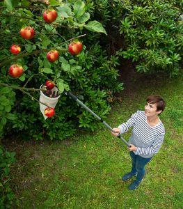 Obstsammler XL Obstpflücker Obstfänger Apfelpflücker
