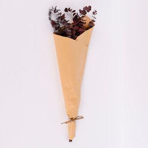 Trockenblume Eukalyptus Naturmaterialien rot 60cm
