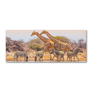 Tulup® Leinwandbild - 125x50 cm - Wandkunst - Drucke auf Leinwand - Leinwanddruck  - Tiere - Braun - Giraffen und Zebras