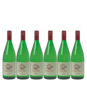 Weißwein Mosel Riesling Weingut Markus Burg Qualitätswein Big Bottle trocken und vegan (6 x 1,0l)
