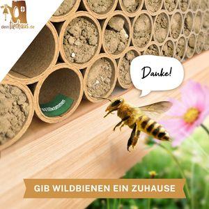deintierhaus.de©   100 Nisthülsen für Wildbienen - ökologische Niströhren aus Pappe - Bruthülsen als Füllmaterial für Insektenhotel bzw. Bienenhotel - Bienen Nisthilfe   Ø 10mm, 15cm Länge