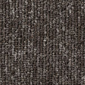 Teppichboden, Auslegware, Meterware, 500 cm x 300 cm, grau, Schlinge