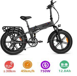 Engwe 20 zoll E-bike Pro Version , Faltbare ALU E-Fahrrad 750W 48V 12.8Ah 45km/h ,schwarz