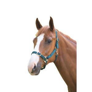 Shires Pferdehalfter Verstellbar ER718 (Pony) (Grün)