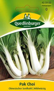 Pak Choi Chinesischer Senfkohl Brassica rapa 425902 Quedlinburger AR3663