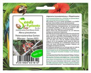 25x Abrus precatorius Paternostererbse Garten Pflanzen - Samen ID53
