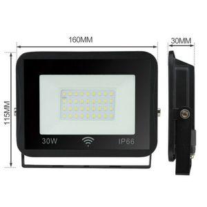 Wolketon LED Fluter mit Bewegungsmelder Aussenlampe IP66 Strahler Flutlicht 30W