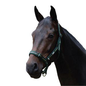 Roma Coordinate Halfter WB305 (Pony) (Dunkelgrün/Schwarz/Grün)
