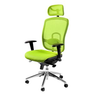 Selsey - Schreibtischstuhl KIRPSY in Grün mit vielen Einstellmöglichkeiten