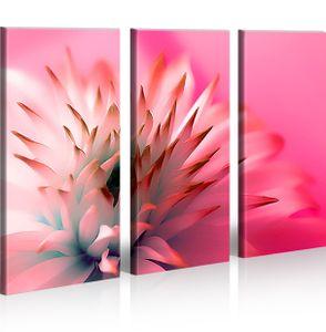 Bilder auf Leinwand Spiky Blumen Orchideen Kunstdruck XXL Bild Poster Leinwandbilder Wandbilder