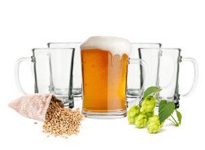 Sendez 6 Biergläser mit Henkel 500ml Bierseidel Bierkrüge Bierglas Bierkrug Glas
